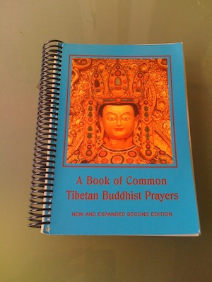 A Book of Common Tibetan Buddhist Prayers Ring Bound Cover thumbnail